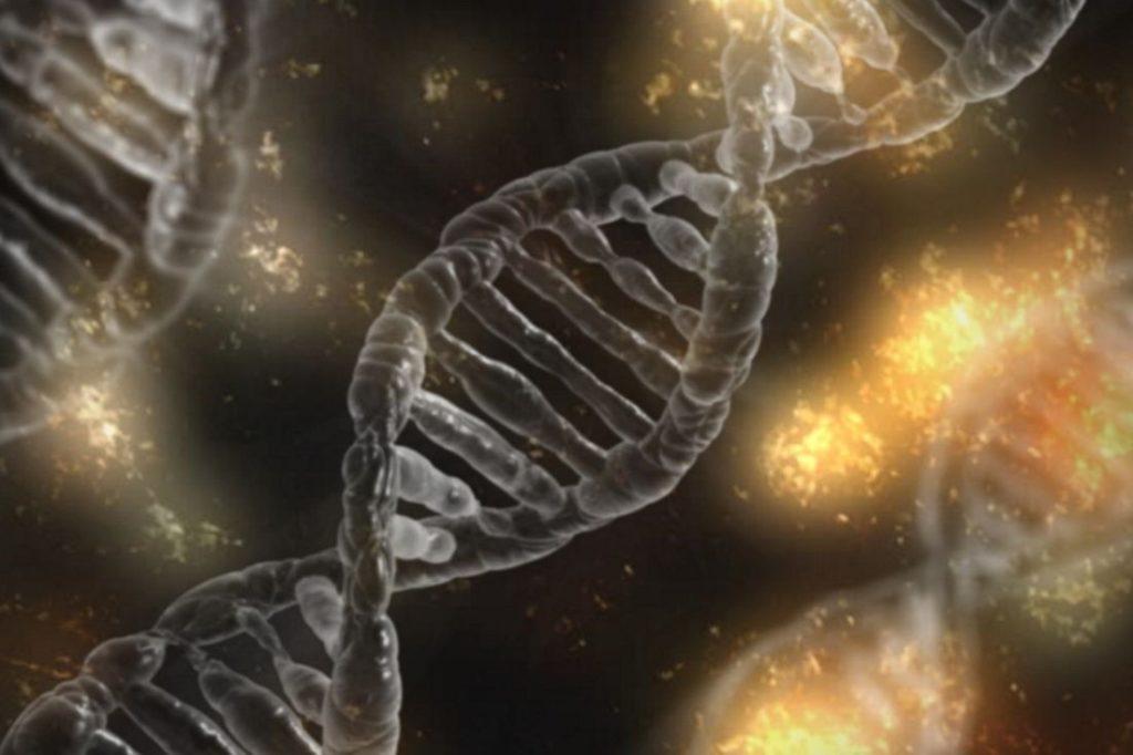 Glaube Epigenetik